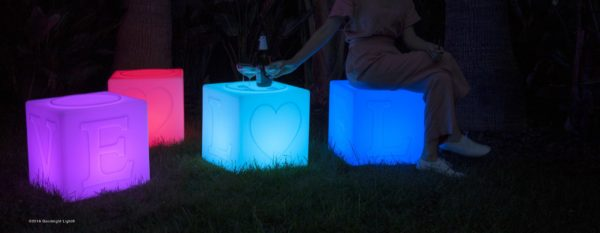 The Love Lamp Night